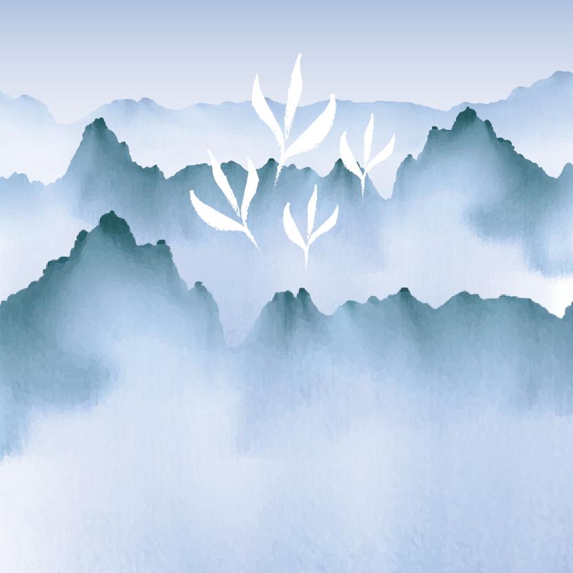 羽唐茶品_冬茶系列